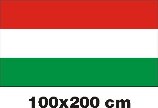 MCN100200